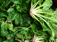 spinach foods high in calcium